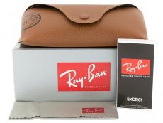 Ray-Ban RB4202 6069/71